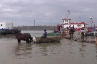 Alertă pe Dunăre. Nivelul fluviului a crescut cu aproape jumătate de metru