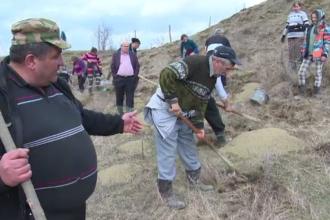 După defrișările masive, au început împăduririle în Maramureș și Bistrița