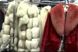 Primul oraş care interzice vânzarea blănurilor. Chiar şi brelocurile cu blană vor fi ilegale