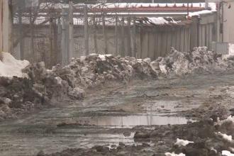 După ninsori, locuitorii unor cartiere din București s-au trezit cu munți de mizerie