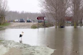 Dunărea a ieşit din matca și ameninţa să inunde mai multe localităţi din Deltă