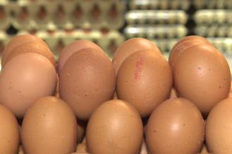 Consiliul Concurenţei verifică prețurile ouălor. Cei care le-au umflat nejustificat riscă amenzi