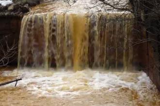 Dezastru în Maramureș. Peștii din râul Lăpuș au murit din cauza apei portocalii