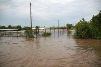 Inundații grave în Teleorman. Peste 150 de gospodării şi sute de hectare de terenuri arabile, afectate de ape