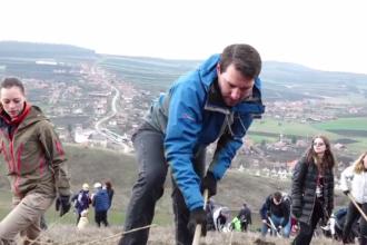 Fostul Principe Nicolae şi soția sa au ajutat la împădurirea unui deal din Cluj