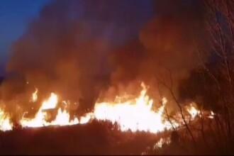 Incendiu de vegetație în Olt. Pompierii s-au luptat 3 ore cu flăcările