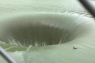 Anunț neașteptat: ce s-a întâmplat cu cormoranul care a căzut în gaura de 61 de metri