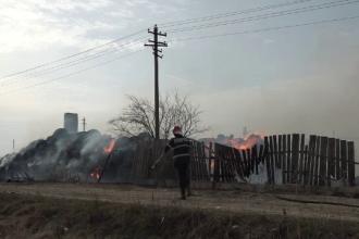 O fermă cu sute de animale a ars în Buzău.