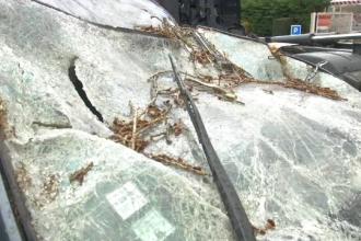 Furtunile au provocat probleme mari în Europa. Vântul a suflat cu rafale de uragan