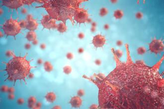 Avertisment OMS despre pandemia inevitabilă cu care se va confrunta omenirea