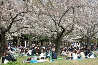 Tokyo ar putea declara starea de urgenţă dacă situaţia se agravează
