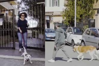 Italienii au început să închirieze câini ca să poată să iasă din case fără să fie amendați