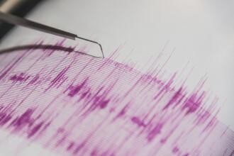 Un cutremur cu magnitudinea 3,1 a avut loc duminică în județul Vrancea