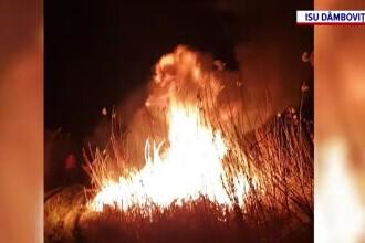 Ce riscă cei care dau foc intenționat vegetaţiei. Amenzile sunt uriașe