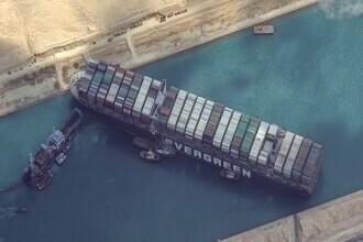 130.000 de animale din România ar putea muri pe vapoare, în Suez. Celulă de criză la ANSVSA