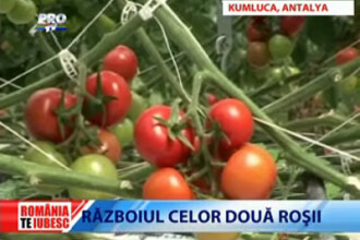 Romania, te iubesc! Ne-au invadat legumele si fructele turcesti