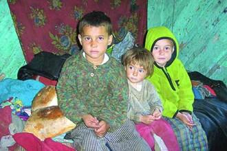 Disponibilizarile intarzie si mai mult adoptiile in Romania