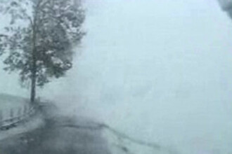Autostrada Soarelui inchisa intre Fundulea si Drajna din cauza poleiului