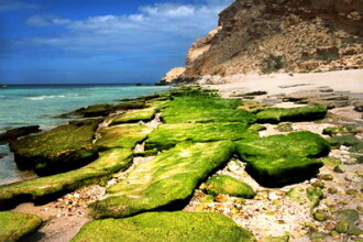 Insula Fericirii - peisaje de pe alta planeta, in Oceanul Indian