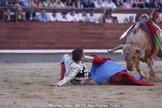 Matador aruncat la pamant de taur in timpul coridei. VIDEO