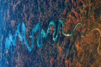 Fotografie reala sau facatura? Dragonul albastru din Portugalia