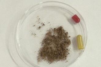 Mii de pastile din pudra de embrioni si copii morti, descoperite in Coreea de Sud