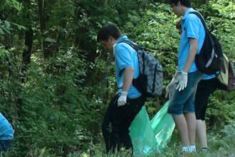 Let's do it, Romania: 140.000 de romani au strans din paduri canapele, saltele, haine si medicamente