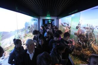 NOAPTEA MUZEELOR 2013  Muzeul Antipa si cel de Istorie