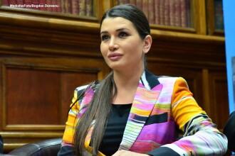 Blaga: La PDL nu exista vreo cerere a Elenei Basescu pentru a candida la europarlamentare