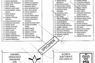 Alegeri EUROPARLAMENTARE. Cum arata buletinul de vot pe care il folosim pe 25 mai 2014