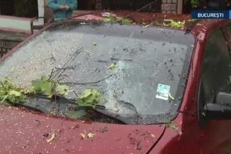 Vremea rea a pus stapanire miercuri seara si peste Bucuresti. Un copac cazut a distrus in totalitate o masina