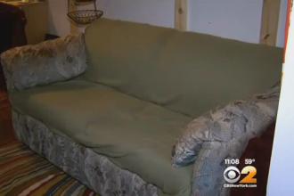 Trei studenti au gasit 41.000 de dolari intr-o canapea folosita, cumparata cu 20 de dolari. Ce au facut cu banii