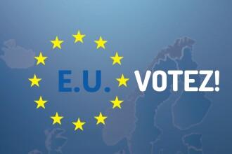 INFOGRAFIC alegeri 2014. Cine sunt candidatii si cum arata buletinul de vot