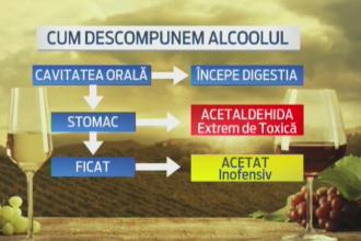 Alcool vs zahar. Specialistii explica felul in care actioneaza in organism si care da dependenta mai mare