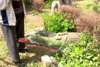 Crocodilul cu mana in gura si statuia lui Vlad Tepes. Cum a