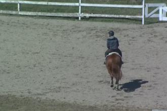 Ancheta in cazul copilului care a murit dupa ce a cazut de pe cal. Baiatul NU era supravegheat de antrenor, ci doar de mama