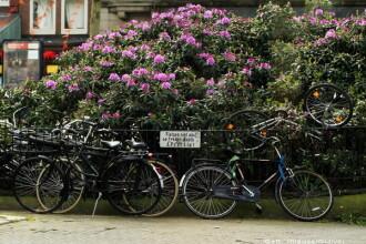 Orasul din Europa in care autoritatile vor sa limiteze turismul. Masurile stricte pe care vor sa le ia impotriva strainilor