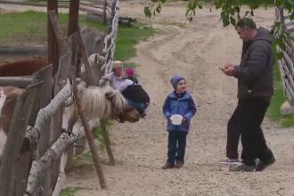 Romanul care si-a facut propria gradina zoologica, la Cluj. Ce animale creste pe o suprafata de 10 hectare