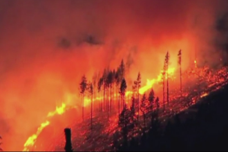 Incendiu de vegetatie amenintator, in Washington. Flacarile au distrus zeci de hectare de padure intr-o noapte