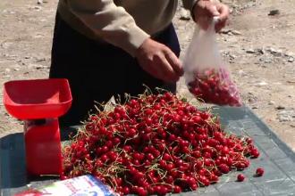 Ciresele 100% bio, nestropite si cu aroma bogata. Cat costa un kilogram vandut la marginea drumului, in satele din tara