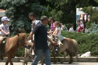 Experienta unica pe care o pot trai copiii si parintii la cel mai mare zoo din Romania: