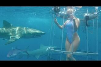 Actrita de filme pentru adulti, atacata de un rechin. Incidentul a fost filmat. VIDEO