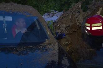 Un copac s-a prabusit peste doua masini din Sectorul 3 al Capitalei. Pe cine dau vina locatarii pentru acest incident