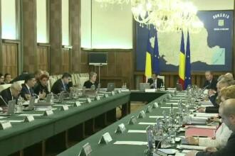 Olguta Vasilescu: Vom propune o varianta de plafonare a indemnizatiilor pentru cresterea copilului. Reactia lui Grindeanu