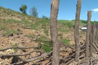 Localnicii dintr-un sat vasluian se tem ca alunecarile de teren le vor inghiti casele. Gardul de protectie a cedat deja
