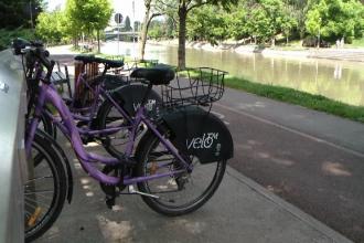 Bicicleta inchiriata cu cardul de calatorie, cel mai eficient mijloc de transport in Timisoara. Cum au reusit autoritatile