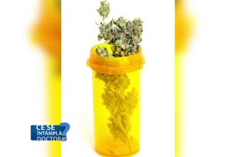 Unul din cinci tineri din România a consumat cel puțin o dată droguri. Avertismentul medicilor