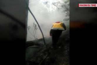 Incendiul din Parcul Naţional Domogled s-a extins. Pompieri din 4 județe acționează la fața locului