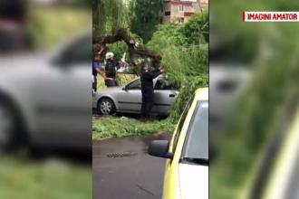Vijelie în Satu Mare. Străzile au fost inundate, câteva mașini distruse de copaci căzuți