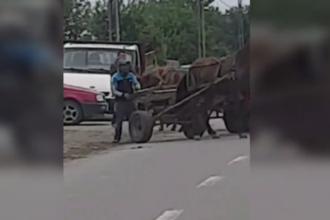 Imagini revoltătoare în Neamț. Doi bărbați, filmați în timp ce își loveau caii înhămați